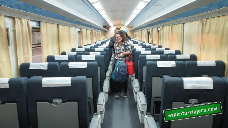 nuevo tren a chascomus