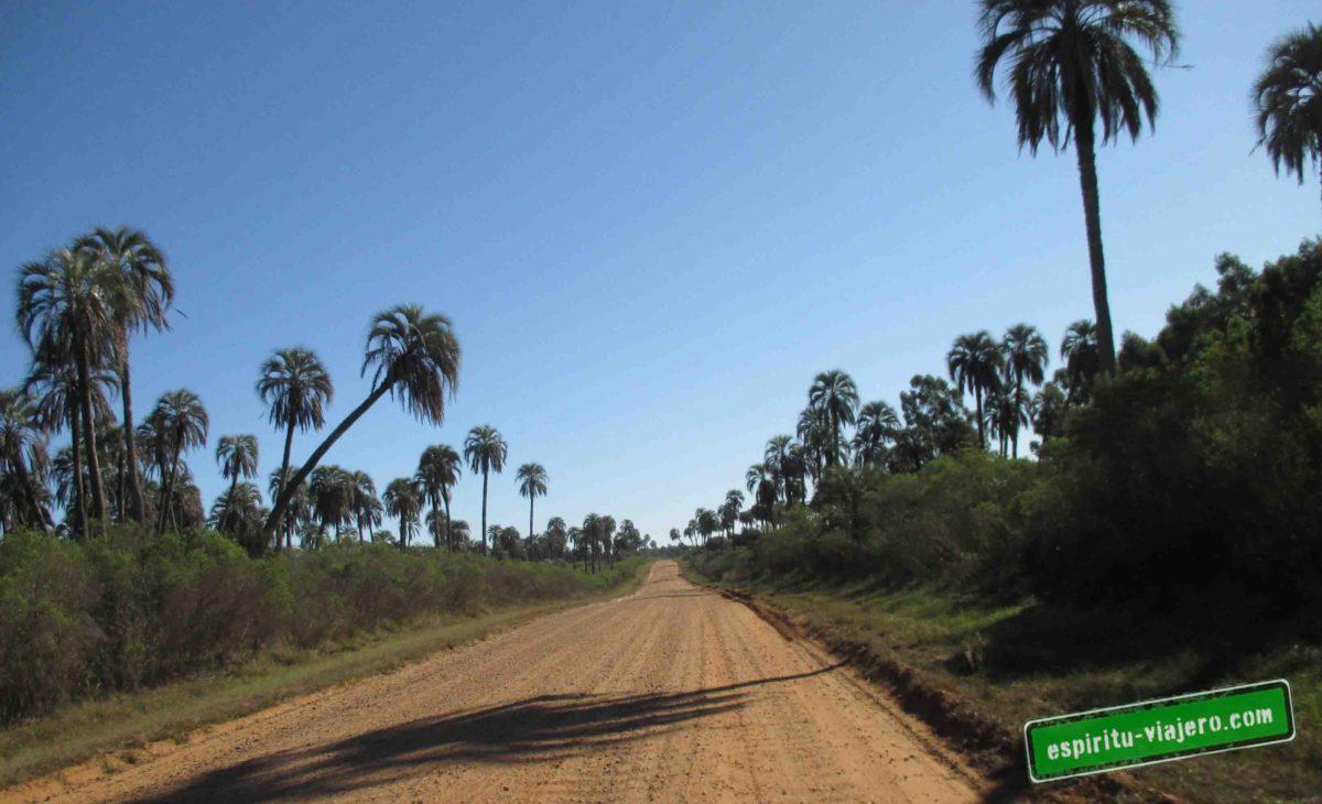 parque nacional el palmar yatay