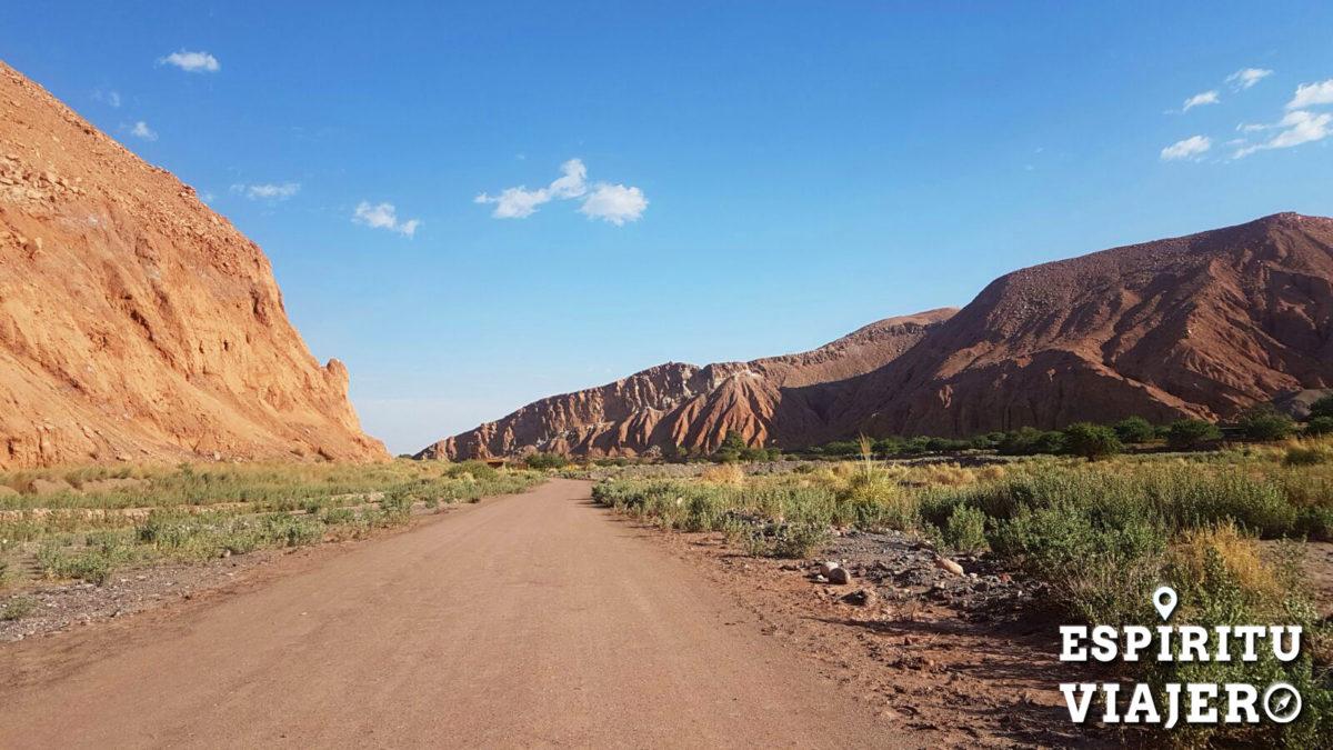 Valle de Catarpe San Pedro Atacama Chile