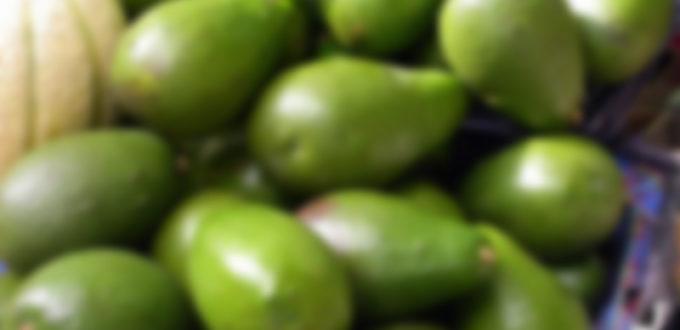 palta chile